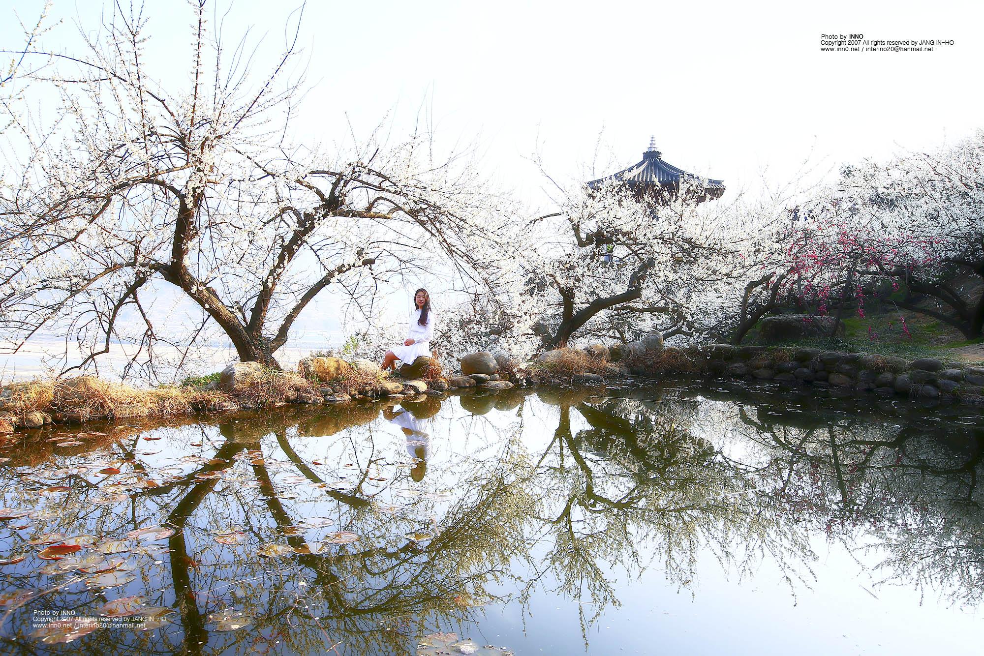 연못4.jpg